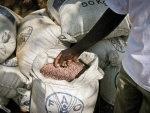 Global food prices hit 10 months high: FAO