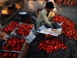 FAO teams up with global wholesale markets union to boost urban food security
