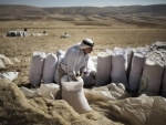 World food prices fall for third straight month, dip projected for grains – UN