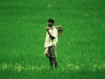 Nirmala Sitharaman announces 1 lakh crore agri infrastructure fund to revive Covid-hit economy