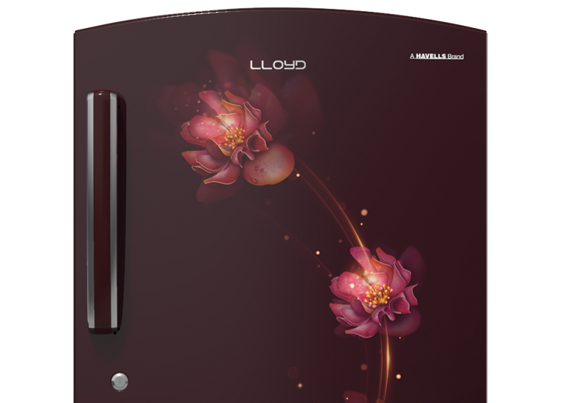 Refrigerator: Lloyd launches Direct Cool, Frost Free and Side by Side categories