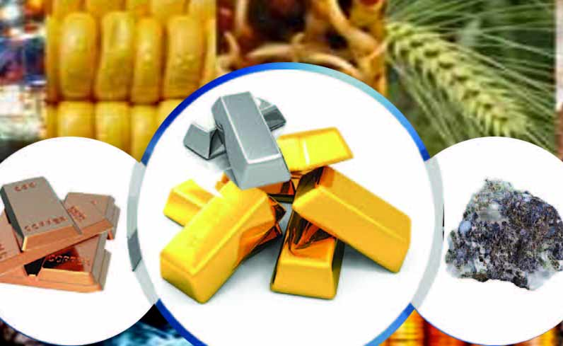 Top 7 Commodities you must invest in Today