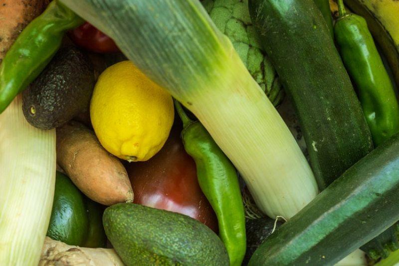 Kashmir Agriculture Department opens organic vegetable market in Srinagar