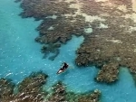UN marks World Oceans Day, seeks protection for oceans