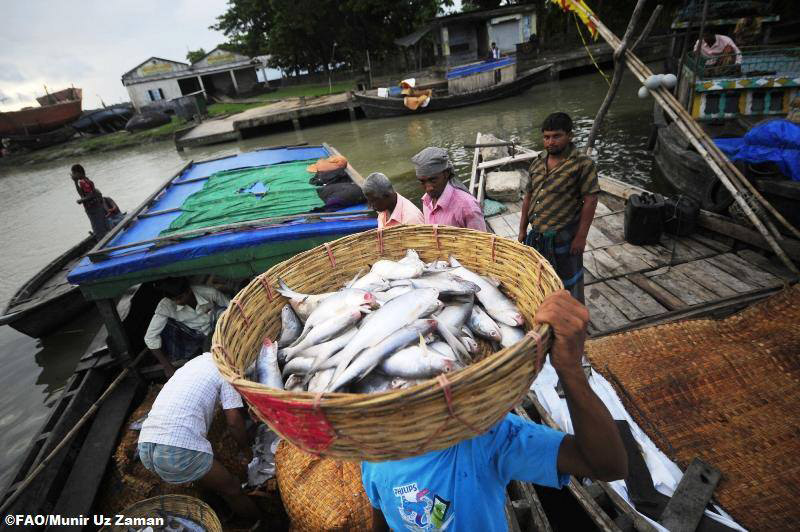 Ban urges recommitment to treaty on use of world's oceans