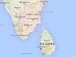 100 whales wash up at beach in Tamil Nadu's Tuticorin