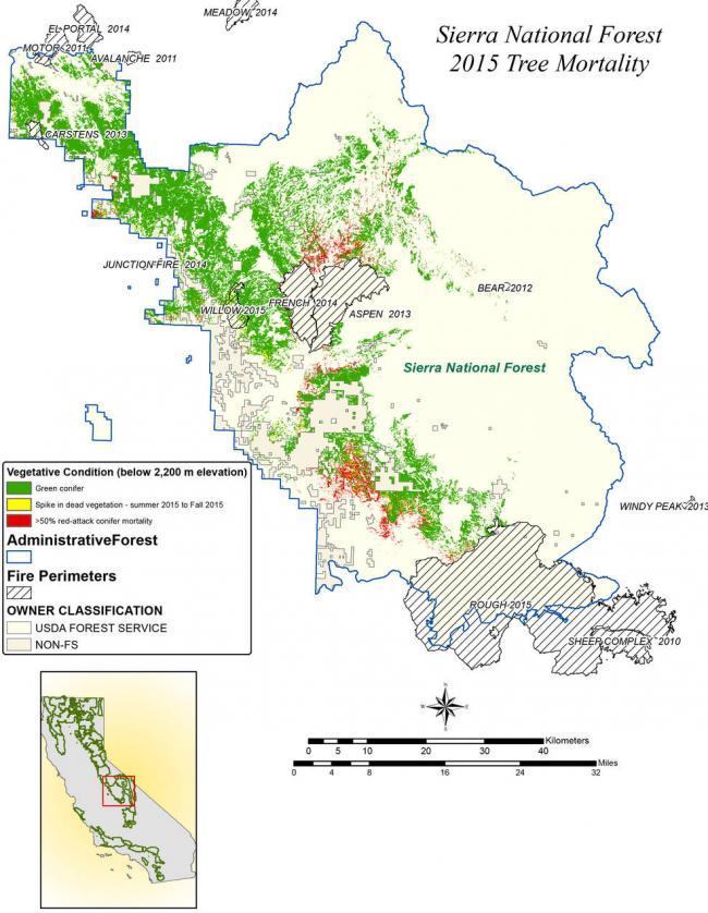 NASA maps California drought effects on Sierra Trees