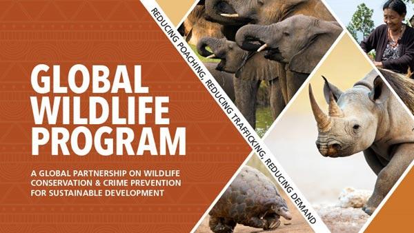 India to host Global Wildlife Programme to address illegal wildlife trade