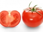 Diet rich in tomatoes cuts skin cancer in half in mice, says study