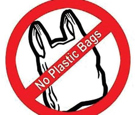 Union Ministry of Environment will certify schools that become plastic free and publicize the harmful effects of plastics
