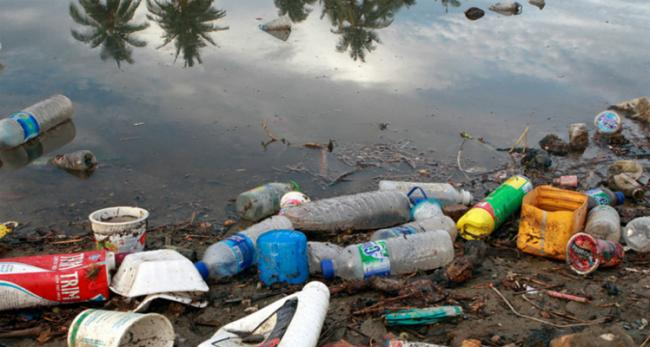 Take responsibility of your plastic waste: Greenpeace India urges big corporations