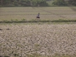 Soil pollution 'jeopardizing' life on Earth, UN agency warns on World Day