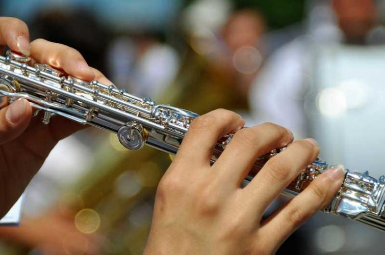 Flute music helps to build brains of premature babies