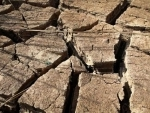 Telangana: People reel under oppressive heat wave conditions
