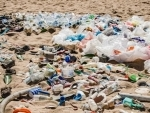 Microplastics, microbeads and single-use plastics poisoning sea life and affecting humans