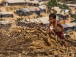 Cyclone Fani hits India, UN moves to protect vulnerable refugees in Bangladesh