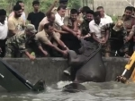 Assam: Indian army-forest personnel rescue elephant calf and mother from a water tank