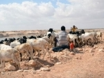 Climate change recognized as 'threat multiplier', UN Security Council debates its impact on peace