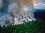 Amazon fires: Bazilian President Bolsonaro sends army to tackle blaze