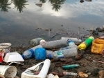 World Migratory Bird Day highlights deadly risks of plastic pollution