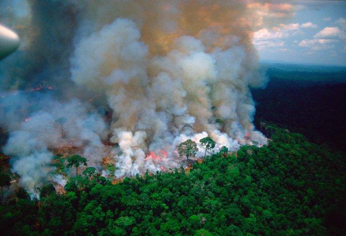 Amazon fires: Bazilian President Bolsonaro sends army to tackle blaze