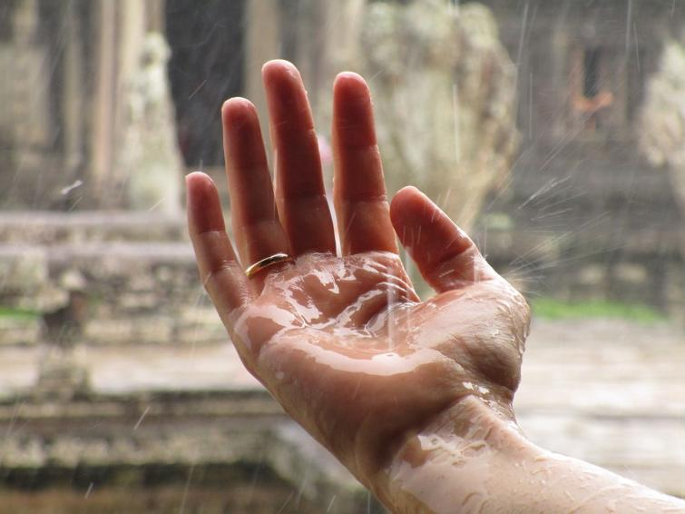 Southwest monsoon vigorours over Rajasthan, Konkan