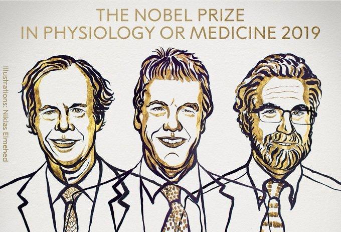 William G. Kaelin Jr, Sir Peter J. Ratcliffe, Gregg L. Semenza win Nobel prize in Medicine