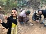 Genetics study helps tiger conservation