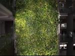 Environmentalist in Jammu creates vertical gardens using plastic bottles, helps in reducing pollution
