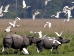 Kaziranga National Park to be reopened for tourists from Oct 21