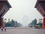 Rare golden monkeys born in China's Shaanxi