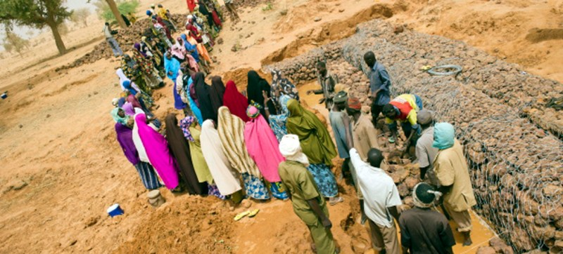 Reversing land degradation can 'pre-empt and manage' conflicts