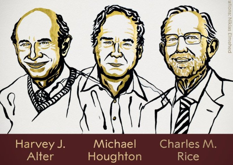Nobel Medicine Prize awarded to three scientists for the discovery of Hepatitis C virus