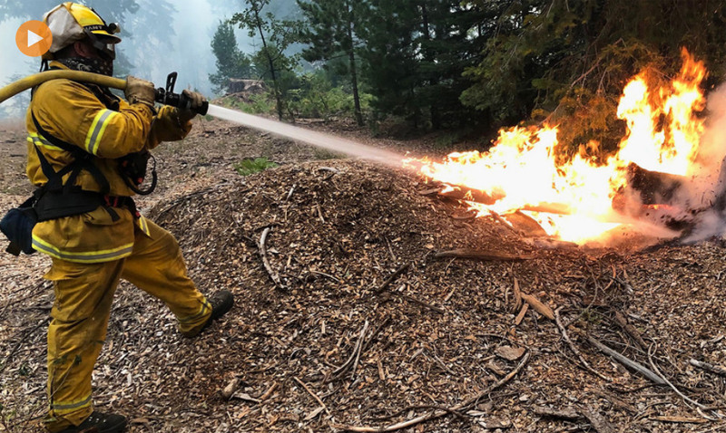 Climate change: Record northern heat, fuels concerns over US wildfire destruction