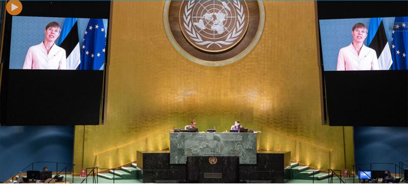 Pandemic shocks world, reinforces need for multilateralism, says Estonian President