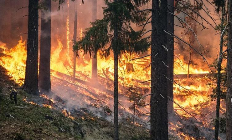 Australia wildfires: 'Mega blaze' may hit parts of the nation on Friday