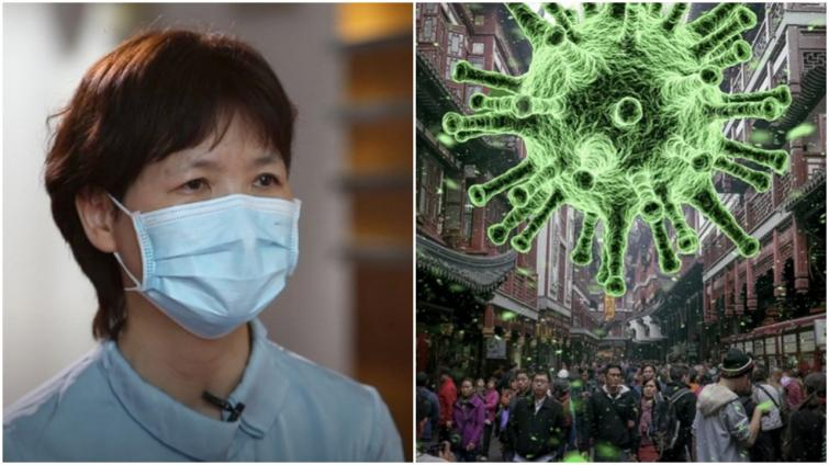 Top Chinese virologist Shi Zhengli says new discovered viruses are 'just tip of iceberg'