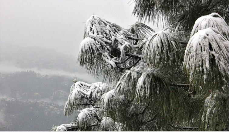 Snow engulfs major tourist spots in Himachal Pradesh