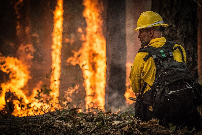Seven people confirmed dead in wildfires in US state of Oregon