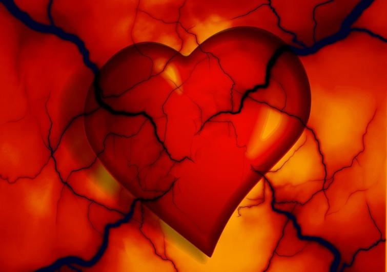 Israeli, Canadian researchers develop 3D heart tissues