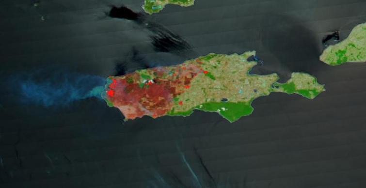 Australia's Kangaroo Island shows burn scars on one-third of landmass: NASA