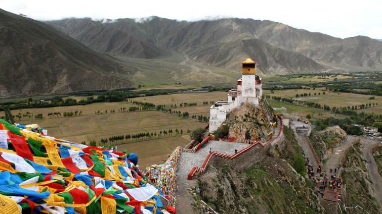 Tibet reports first suspected case of novel coronavirus pneumonia