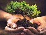 GREEN J&K DRIVE| Modalities for planting 1.3 crore trees in J&K discussed