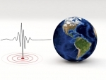 4.5 magnitude earthquake hits Andaman and Nicobar Islands, no casualty