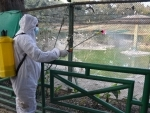 Central teams conducting epidemiological investigation in Bird Flu-hit states