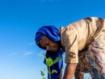 Support mangrove conservation, UNESCO chief says