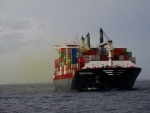 Environmentalists move Sri Lankan Supreme Court against government, operators over ship fire