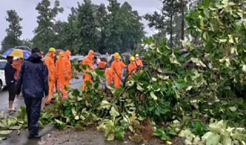 Cyclone Gulab: Heavy downpour batters coastal Andhra Pradesh districts