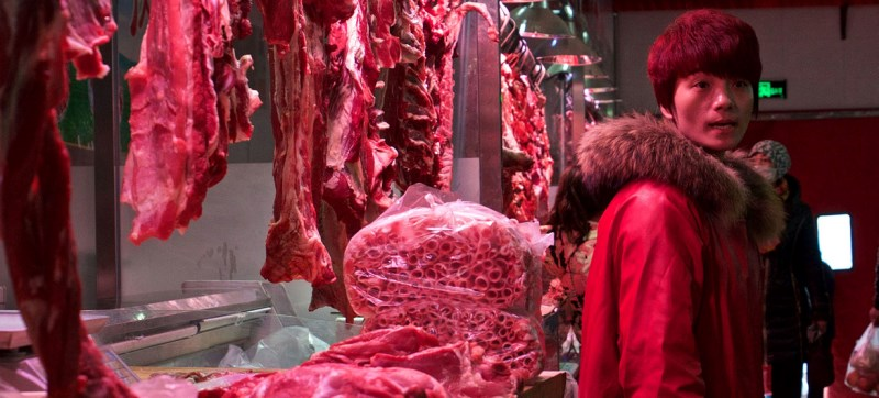WHO and partners urge countries to halt sales of wild mammals at food markets