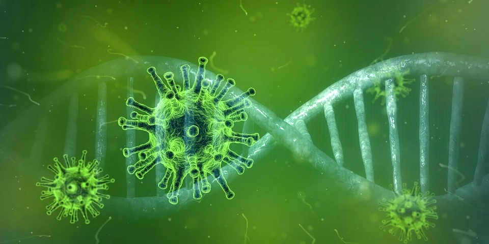 China: Wuhan lab created '10,000-times stronger than usual' coronavirus strains, says scientist